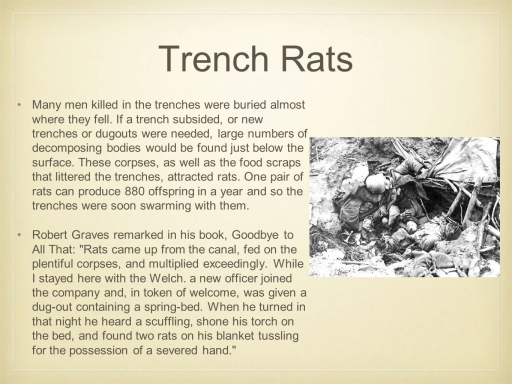 Trench+Rats