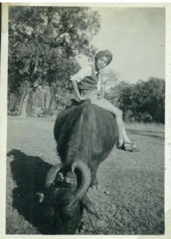 ridingbuffalo